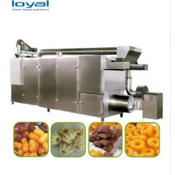 Industrial Automatic High Efficiency Pet Food Machine/Big Output Automatic Food Production Line For Pets #1 image